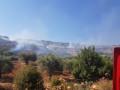 اندلاع حريق كبير في منطقة حرشية بين جولس ويركا*