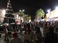 الفرح والتسامح بيوم اضاءة الشجرة بمدينة عكا