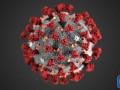 تشخيص 105 إصابات جديدة بفيروس كورونا المستجد