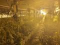 اكتشاف مختبر هيدرو لترويج المخدرات الخطرة بقيمة 15 مليون شيكل
