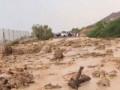 مأساة في الأردن..مقتل وإصابة العشرات في حادث مروع لحافلة بعد السيول الجارفة.