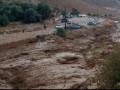 فاجعة جديدة في الأردن.. سيول جارفة تقتل 10 أشخاص