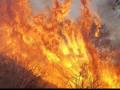 30 قتيلا ومئات المفقودين في حرائق كاليفورنيا الكارثية
