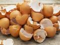 إذا كنت من مدمني تناول البيض.. فإليك هذا الخبر!