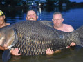 """اصطياد """"أضخم سمكة"""" في العالم!"""