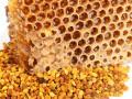 حبوب اللقاح.. مكون صحي عجيب ينتجه النحل ويجب رشه على أطباقك