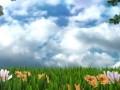 يطرأ انخفاض طفيف على درجات الحرارةوالطقس غائم جزئي